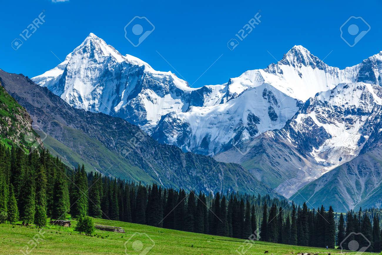snow mountains in Xinjiang - 91971252