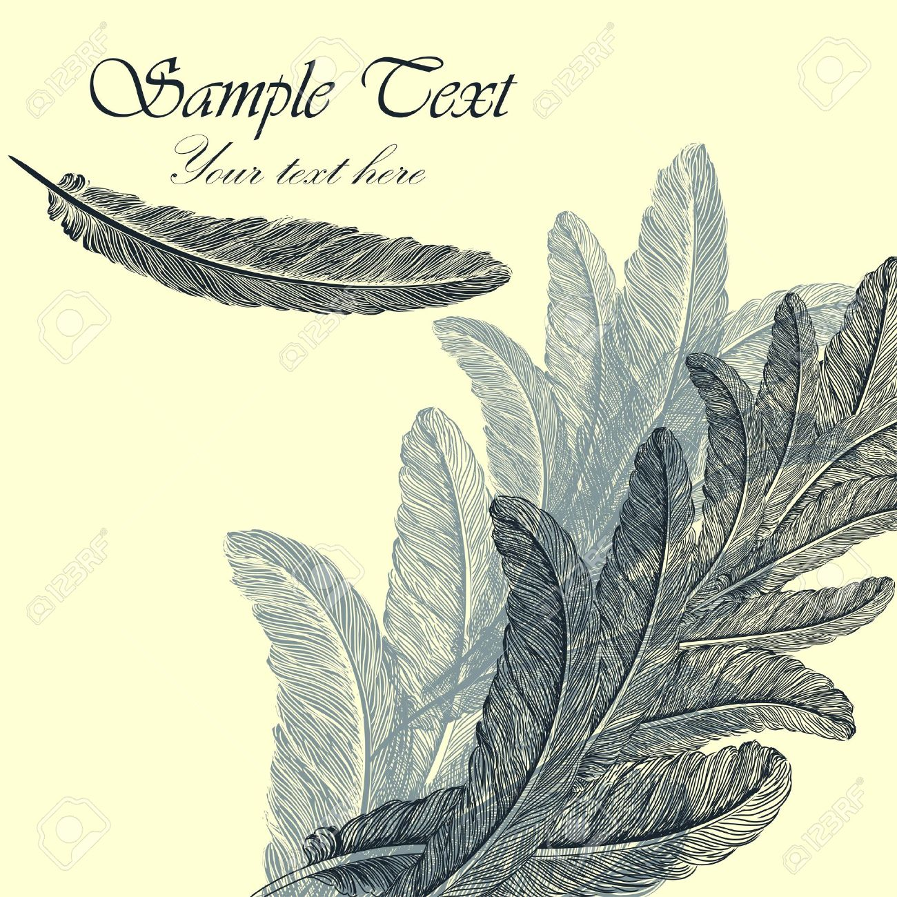 Vintage background with hand-drawn feathers Stock Vector - 11660450