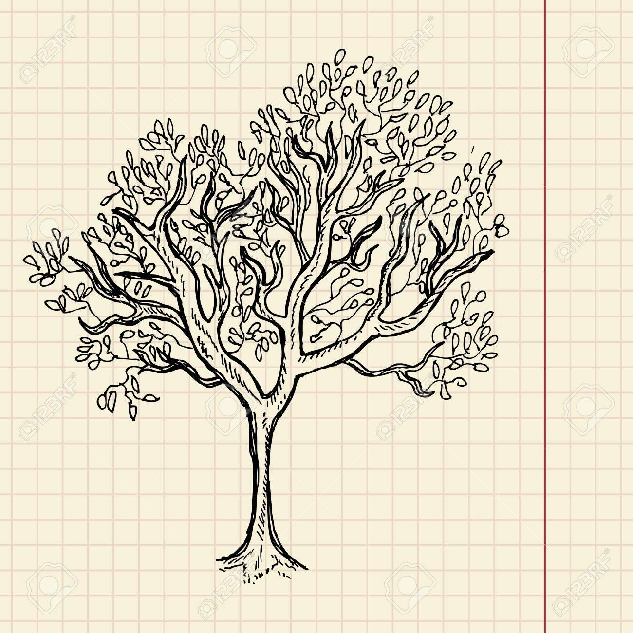 Bush sketch on school paper, vector illustration, eps 10 Stock Vector - 11377805