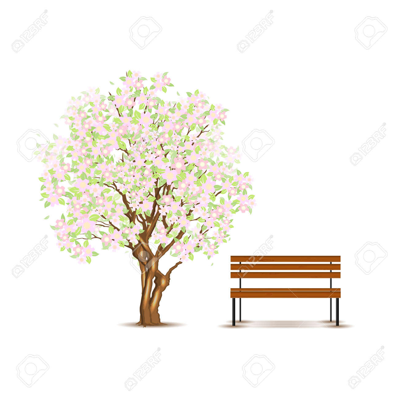 Traditional japanese tree and bench isolated on white Stock Vector - 13009336