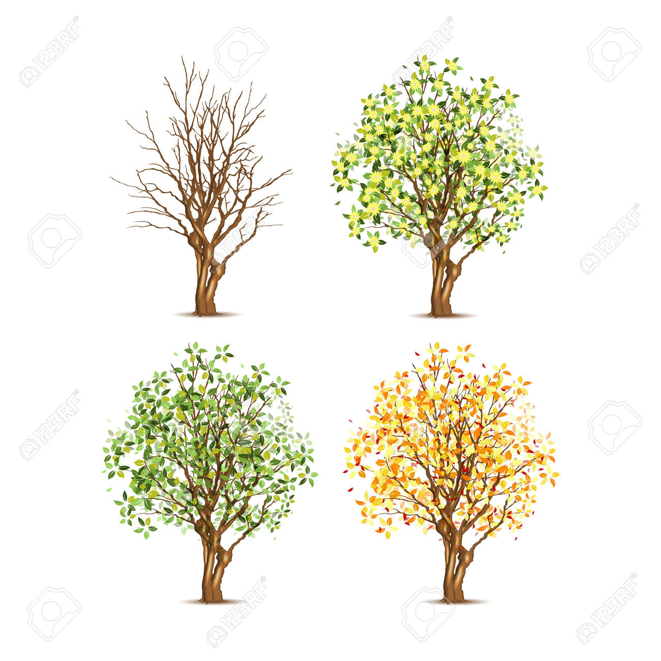 Set of four trees in different seasons, transparent shadow - 15406262