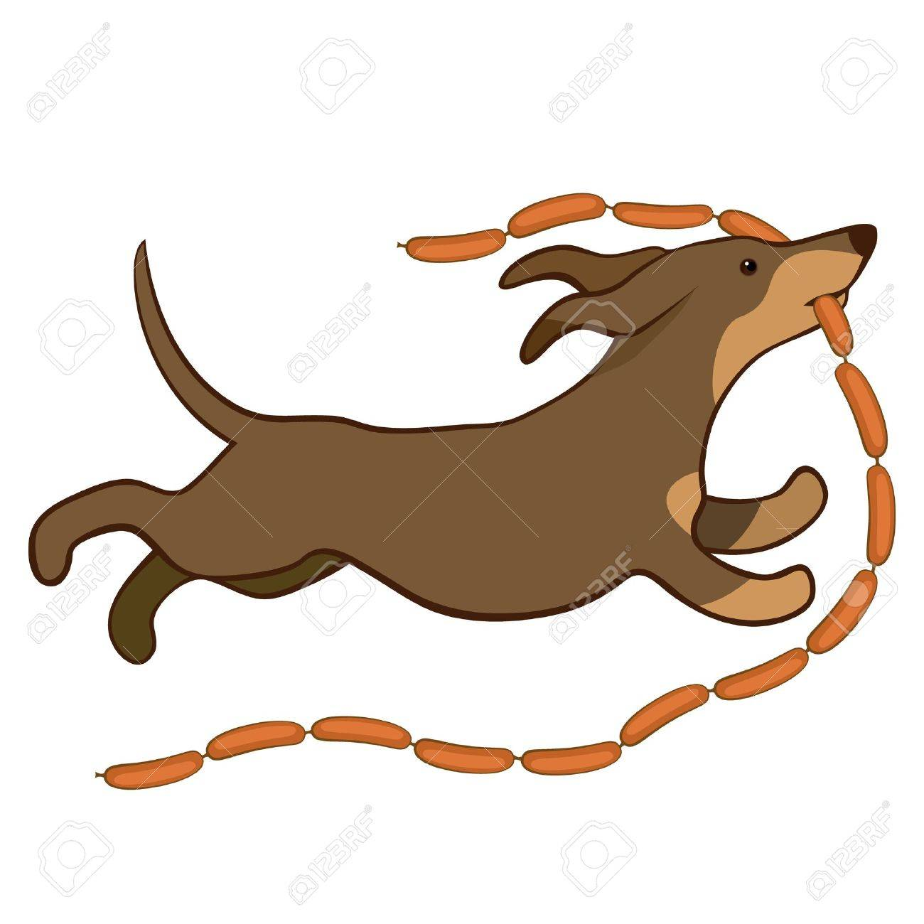 lucky dog runing with sausages vector illustration Stock Vector - 11142800