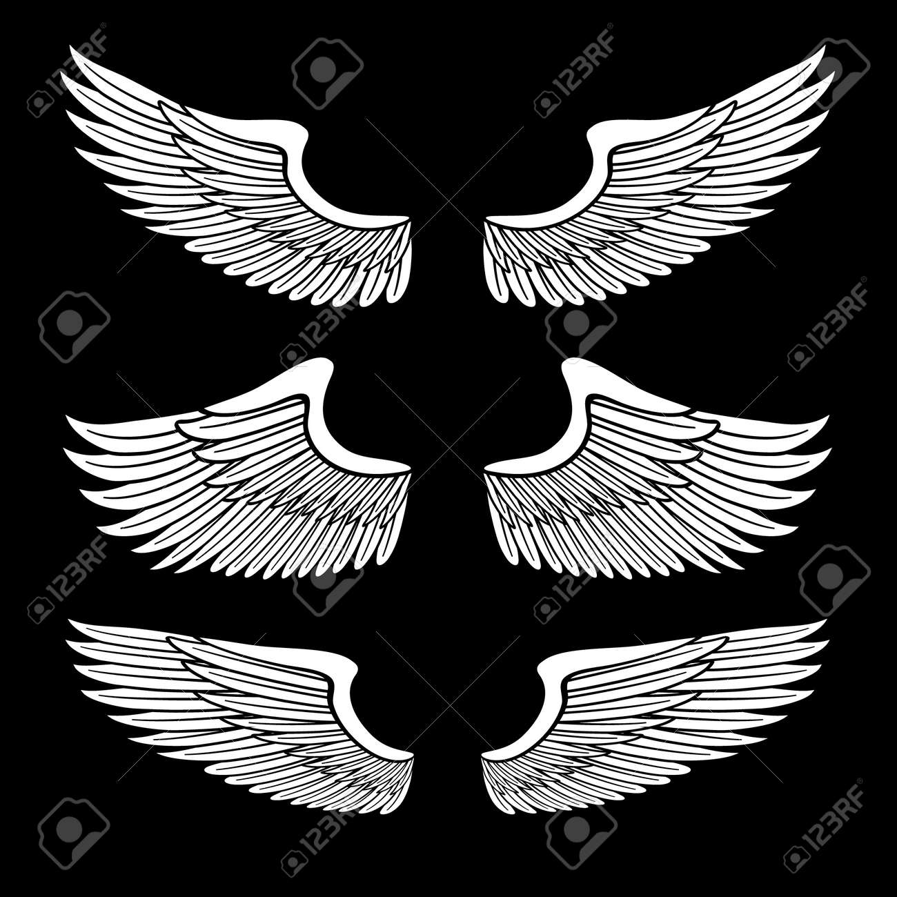 white angel wings set isolated on black Stock Vector - 12494761