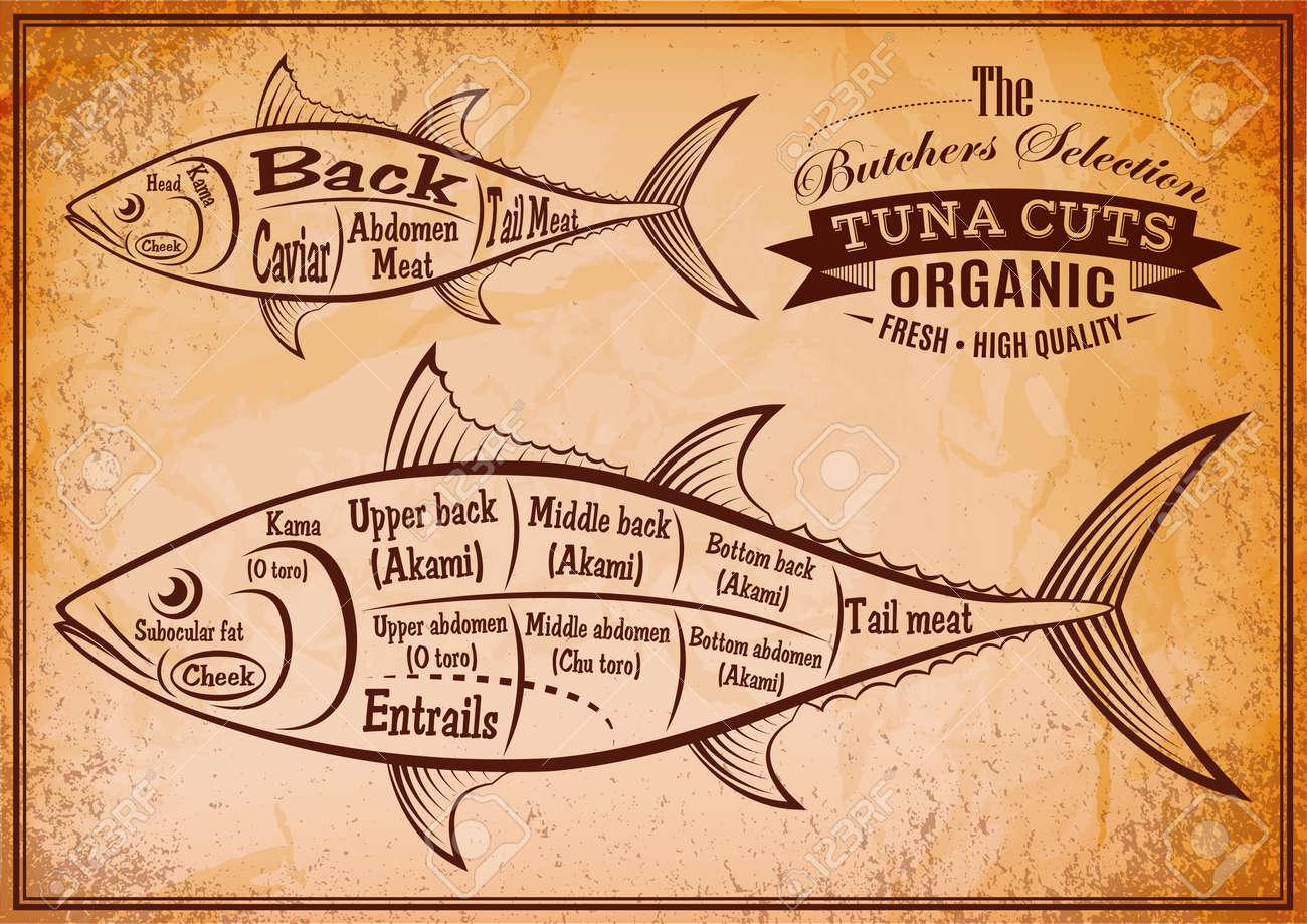 Tuna Meat Diagram - Basic Guide Wiring Diagram •