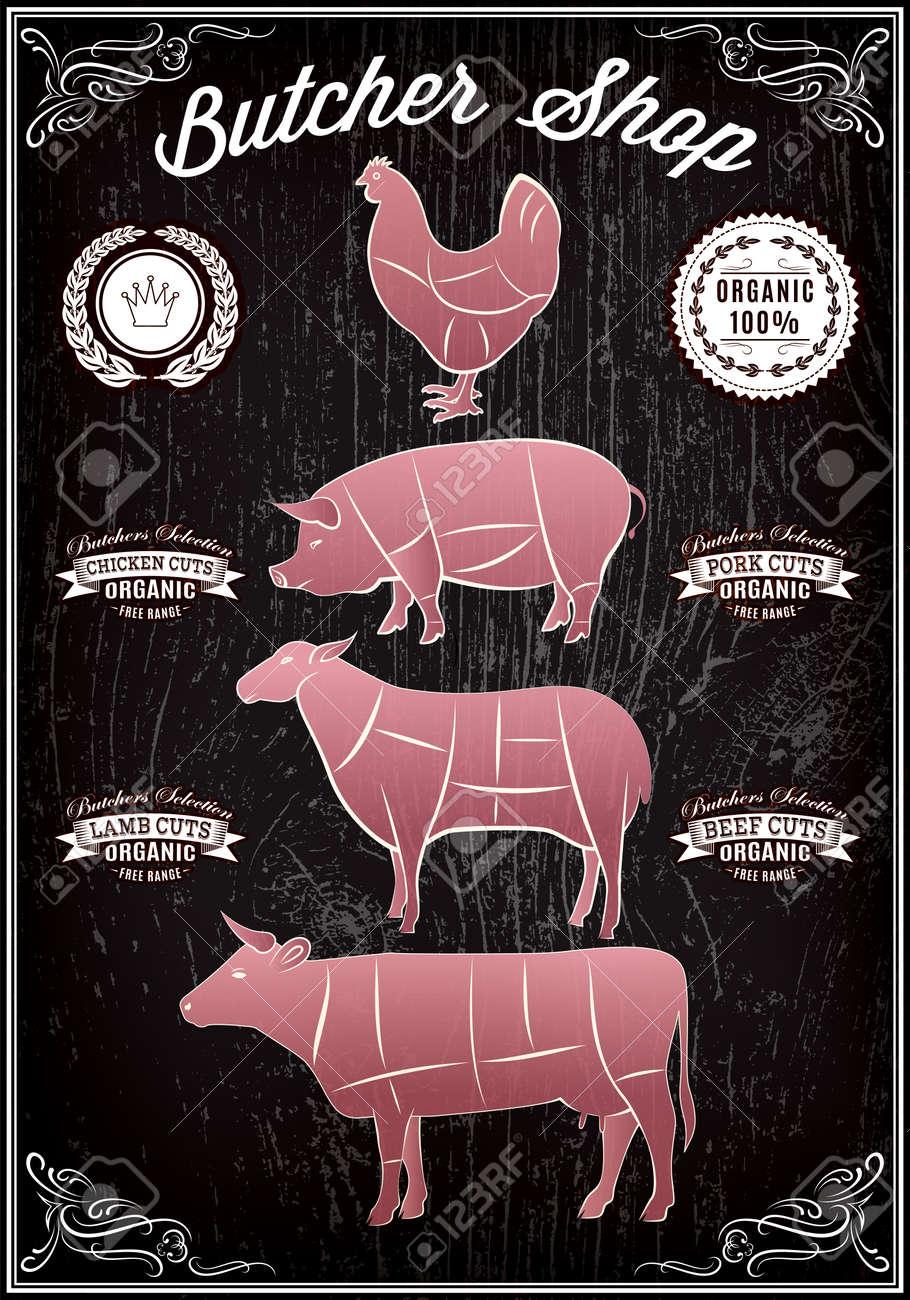 Cadáveres Vector Diagrama De Corte De Carne De Pollo, Cerdo, Vaca ...