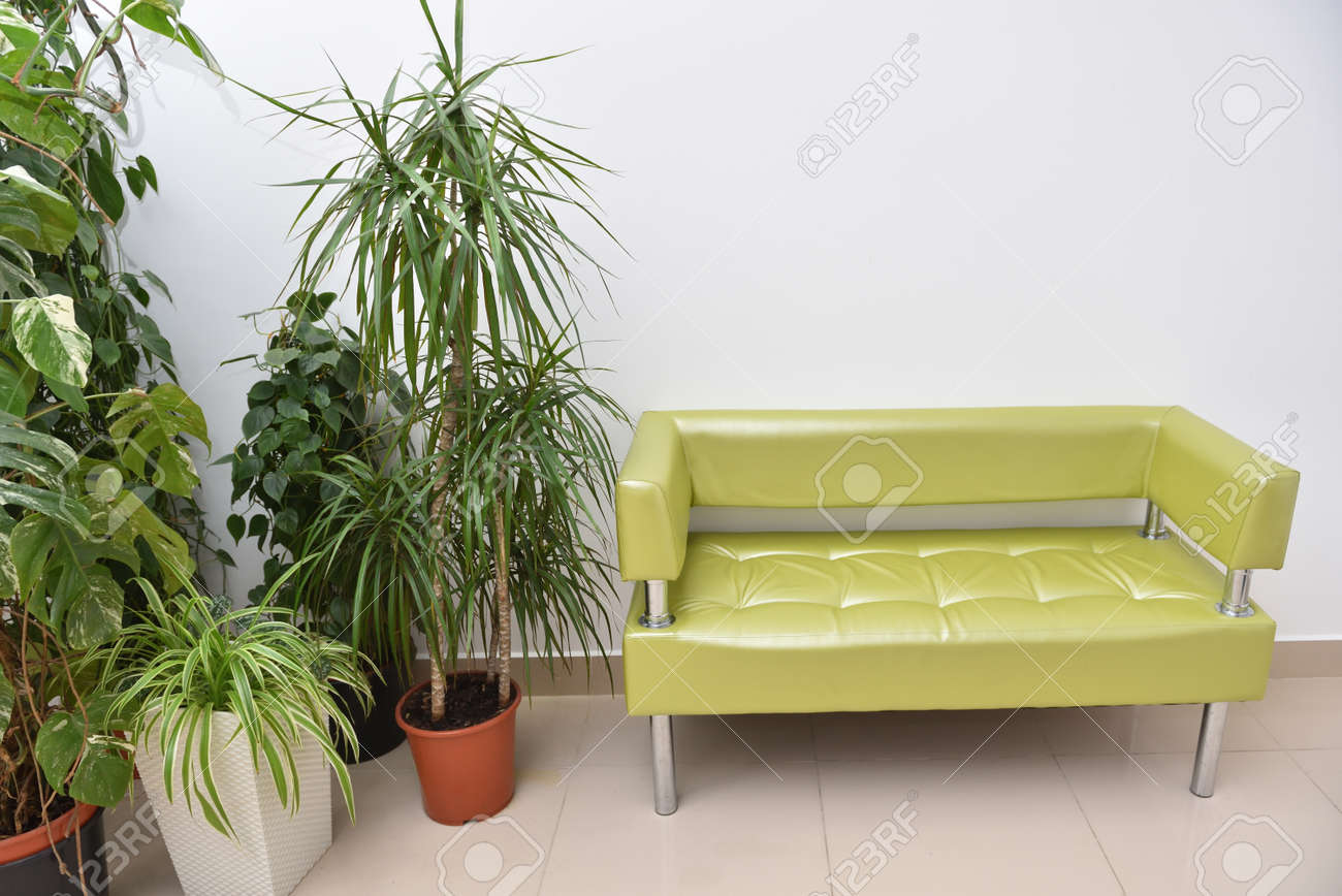 A Beautiful Place To Relax Or Wait A Golden Sofa And Large Indoor Stock Photo Picture And Royalty Free Image Image 117107973