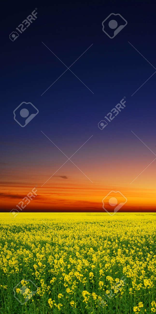 sunset Stock Photo - 9523873