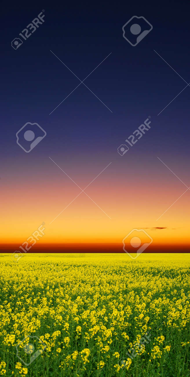 sunrise Stock Photo - 9523874