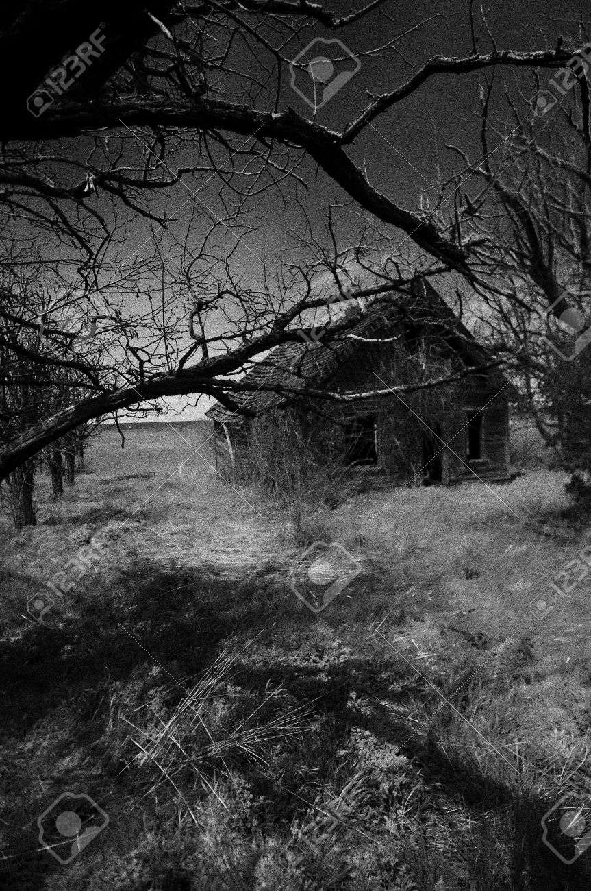 Old house that has been abandoned all the tree have died , he photo turned into a Black & White image. Stock Photo - 5018095