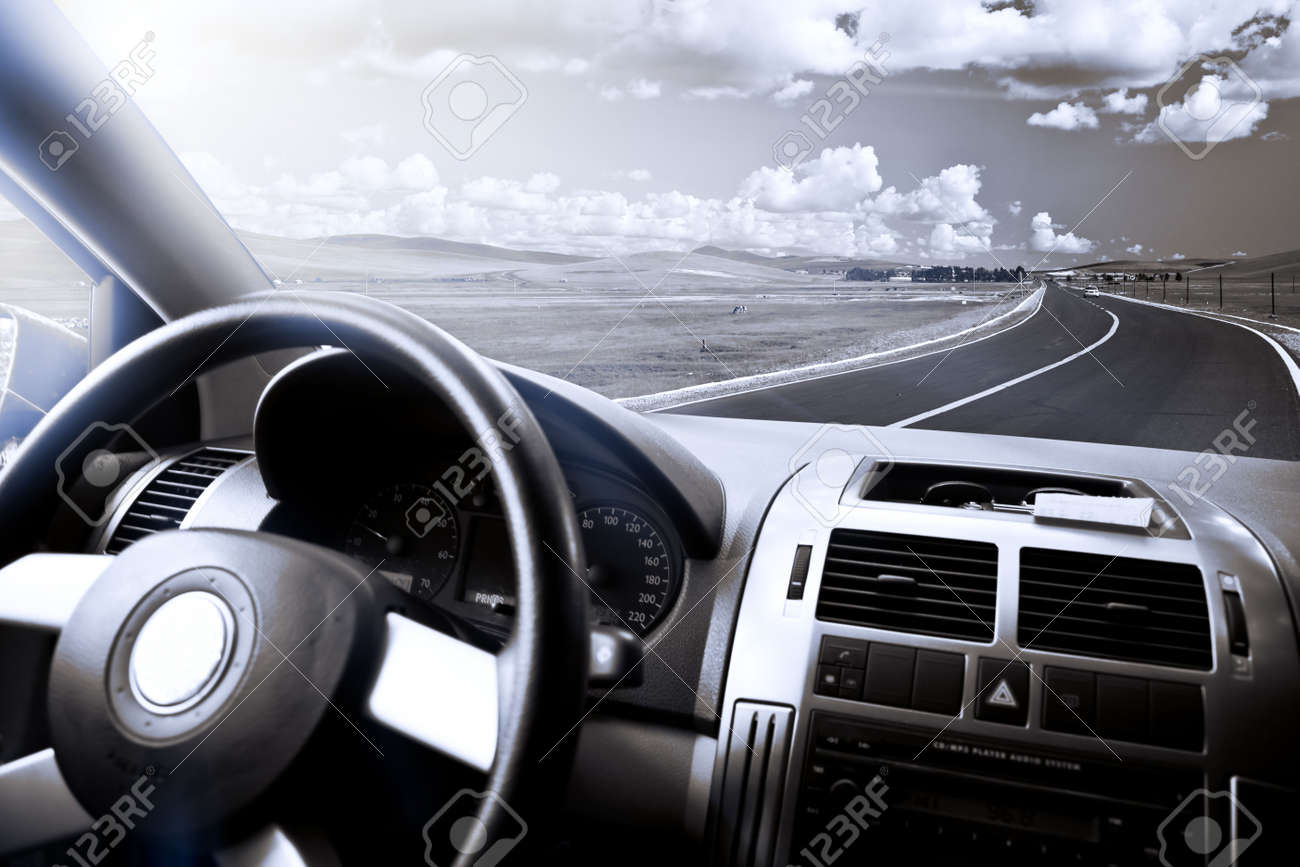 view of the meadow from a car. Stock Photo - 5463437