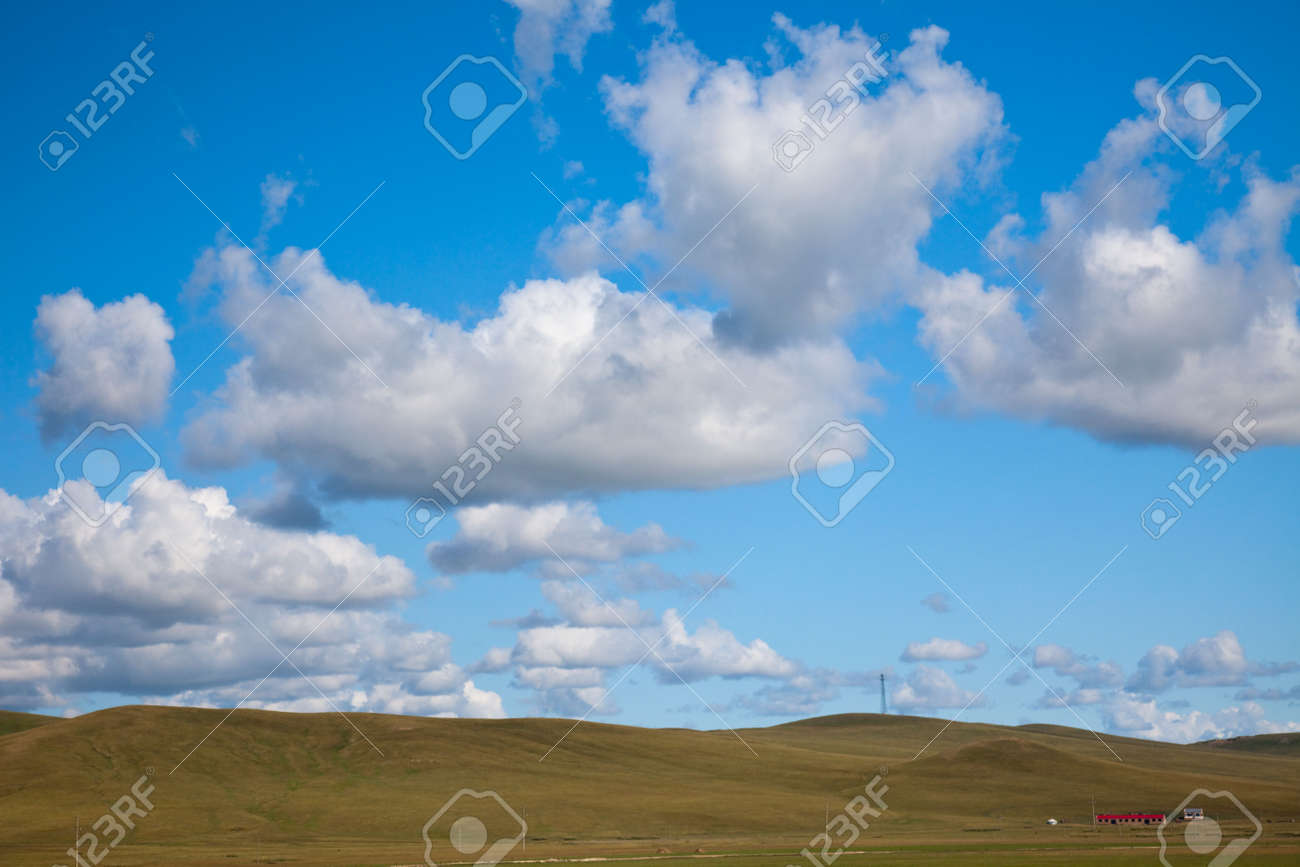 the scene of the meadow. Stock Photo - 5466242