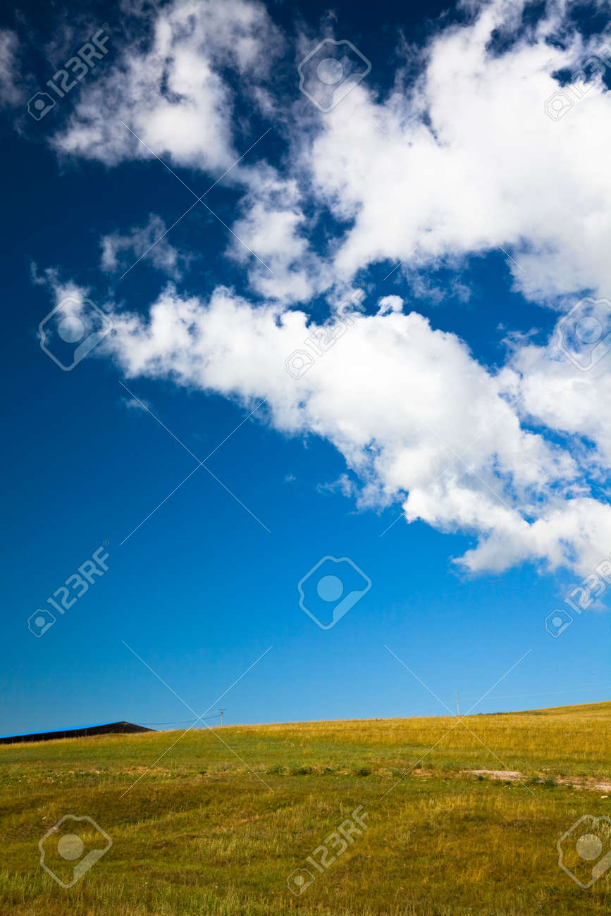 the scene of the meadow. Stock Photo - 5463463