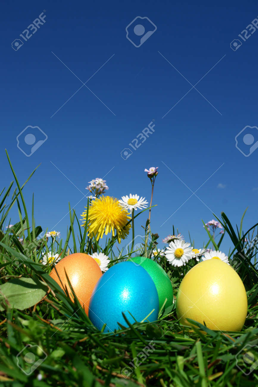 colorful Easter egg in the fresh  spring meadow Stock Photo - 8952477