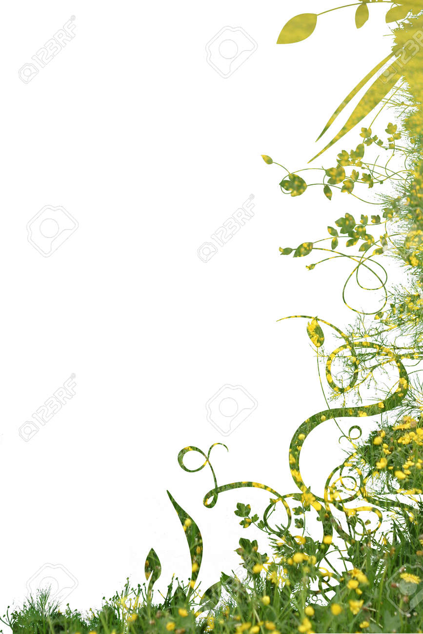 floral foliage beautiful arty background against white Stock Photo - 8952487