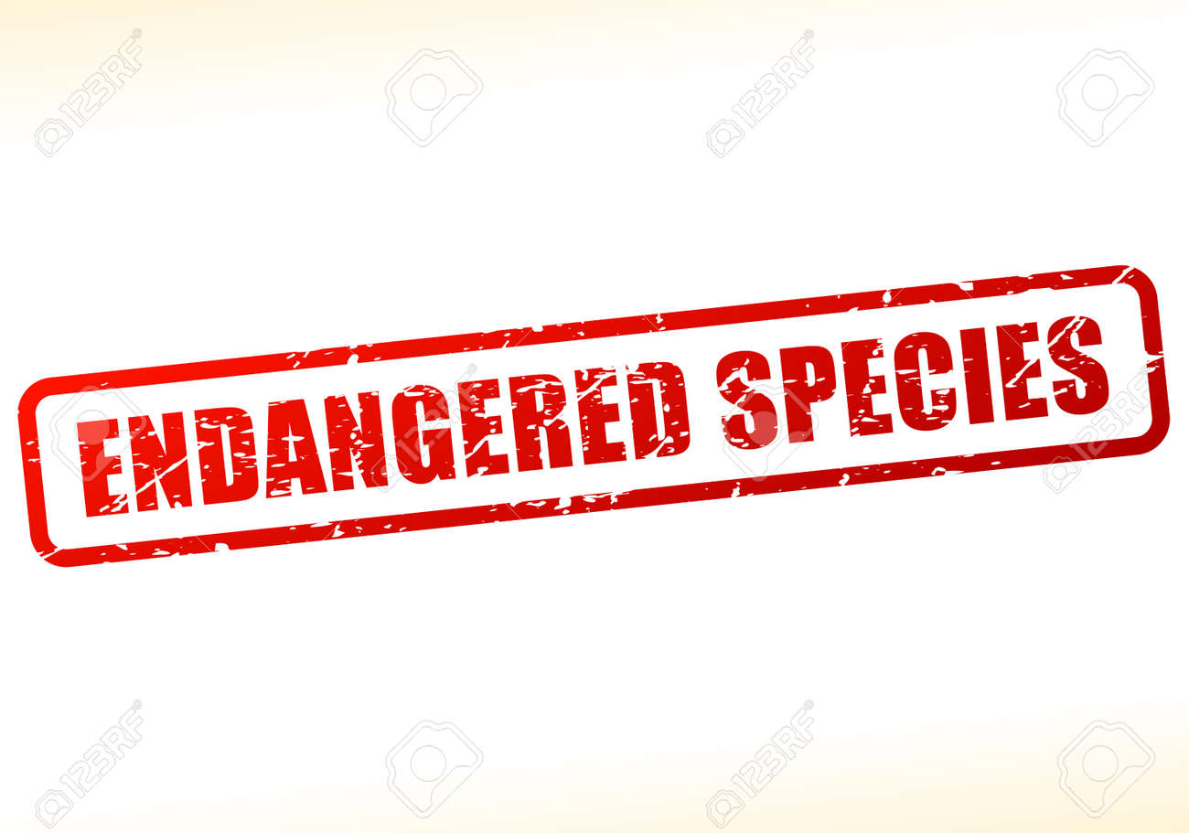 Illustration of endangered species text buffered on white illustration of endangered species text buffered on white background stock vector 68592254 biocorpaavc Image collections