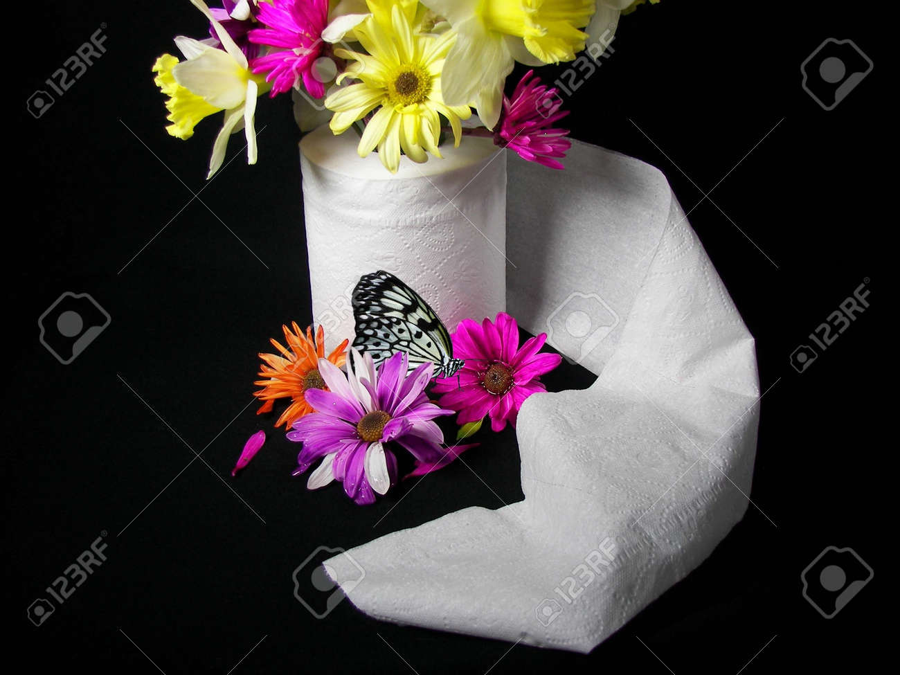 Flower bouquet in toilet paper with butterfly stock photo picture flower bouquet in toilet paper with butterfly stock photo 3101503 izmirmasajfo