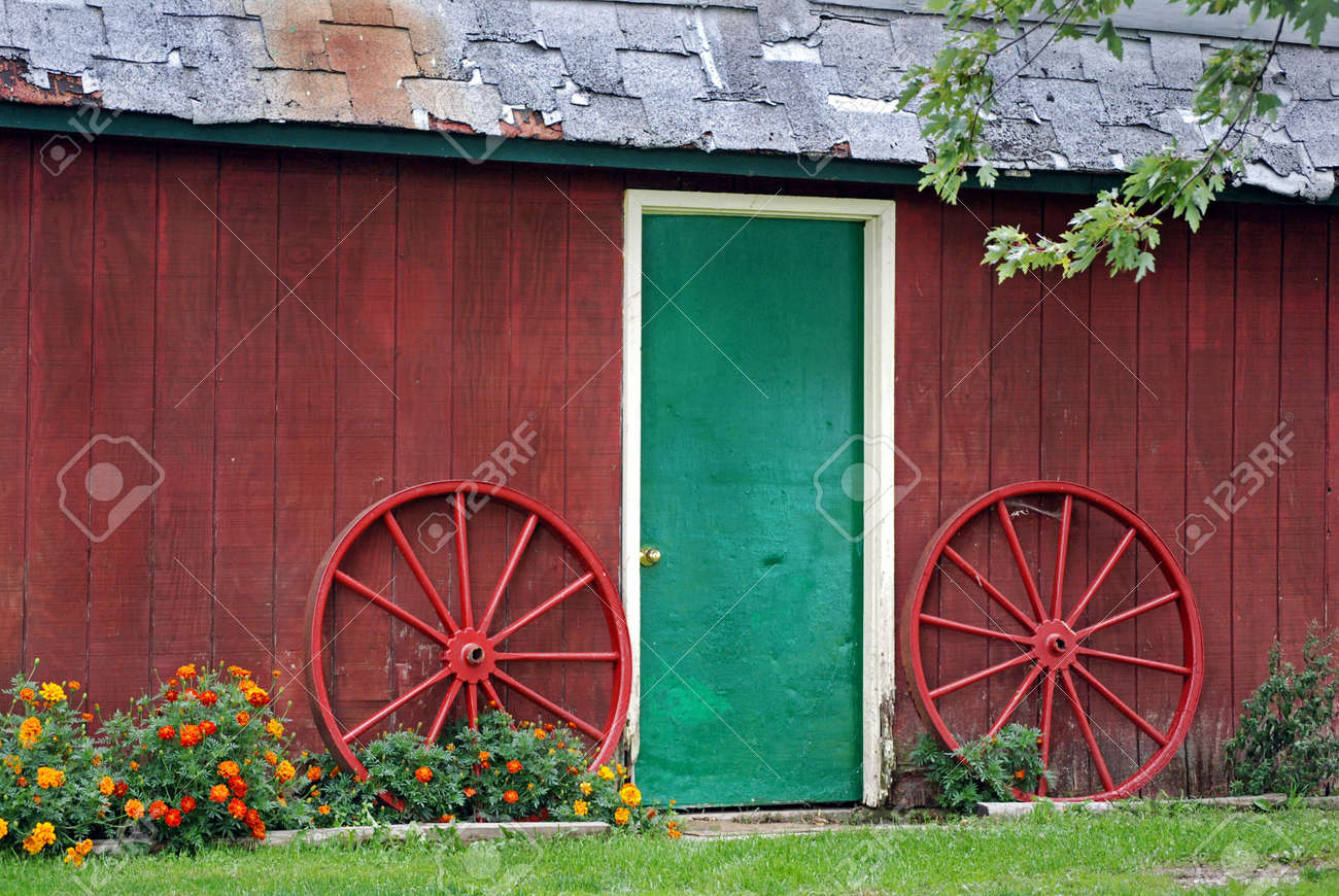 Cow on green pasture with red barn with grain silo royalty free stock - Agriculture Red Barn Door Bright Green Door Of An Old Barn With Wagon Wheels