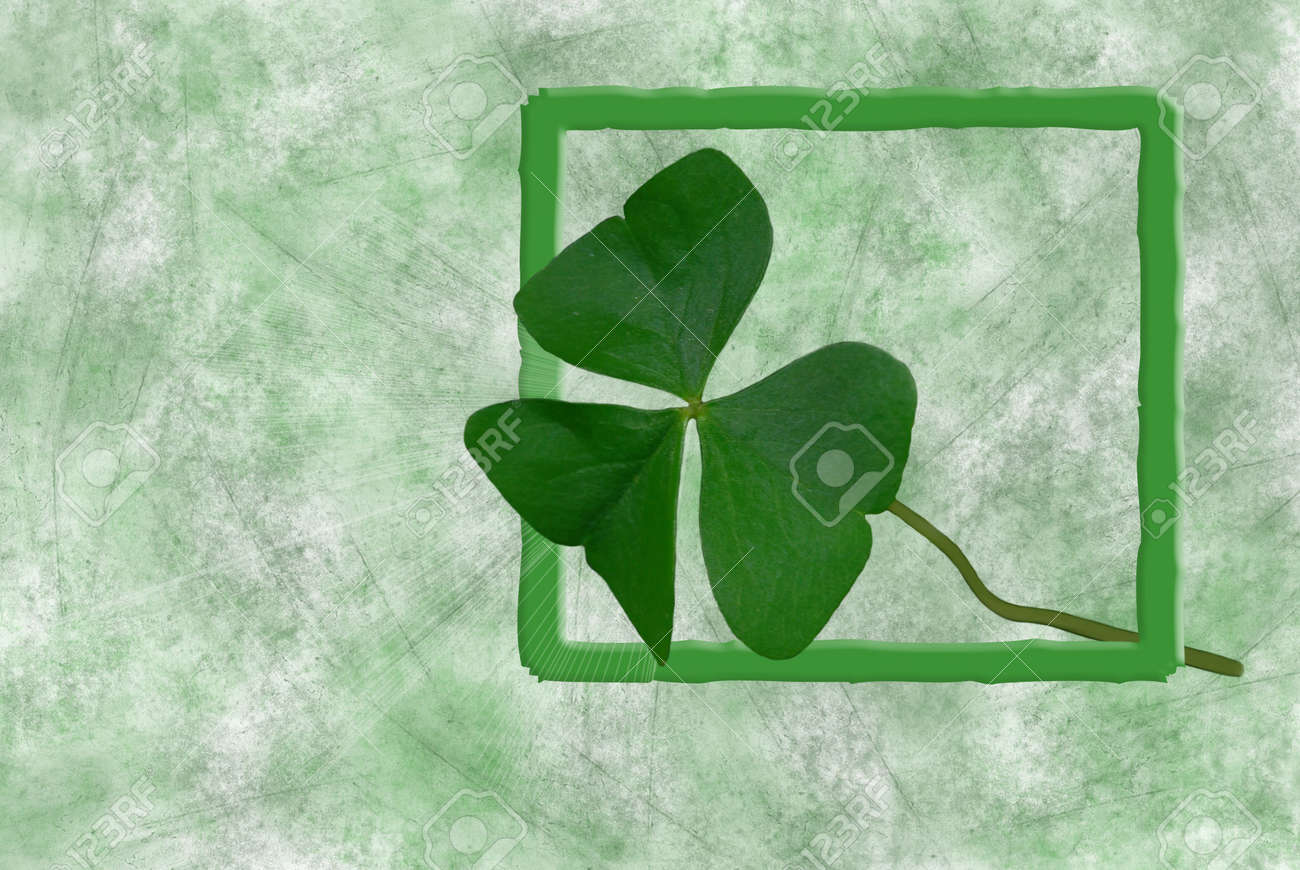 Shamrock leaf in beveled frame on textured background. Stock Photo - 4446523