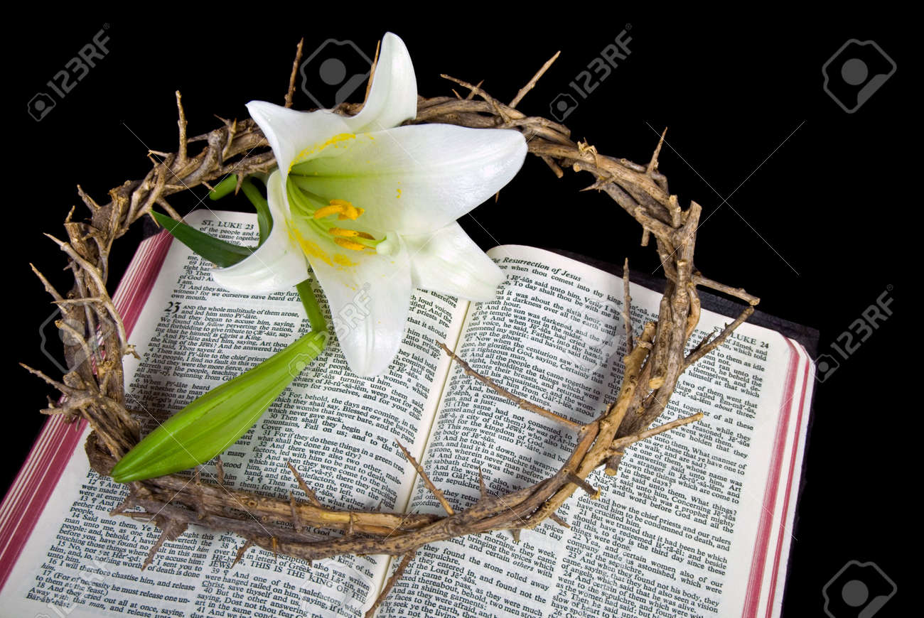 Crown of thorns and Easter lily blossom on Bible. Stock Photo - 6788779