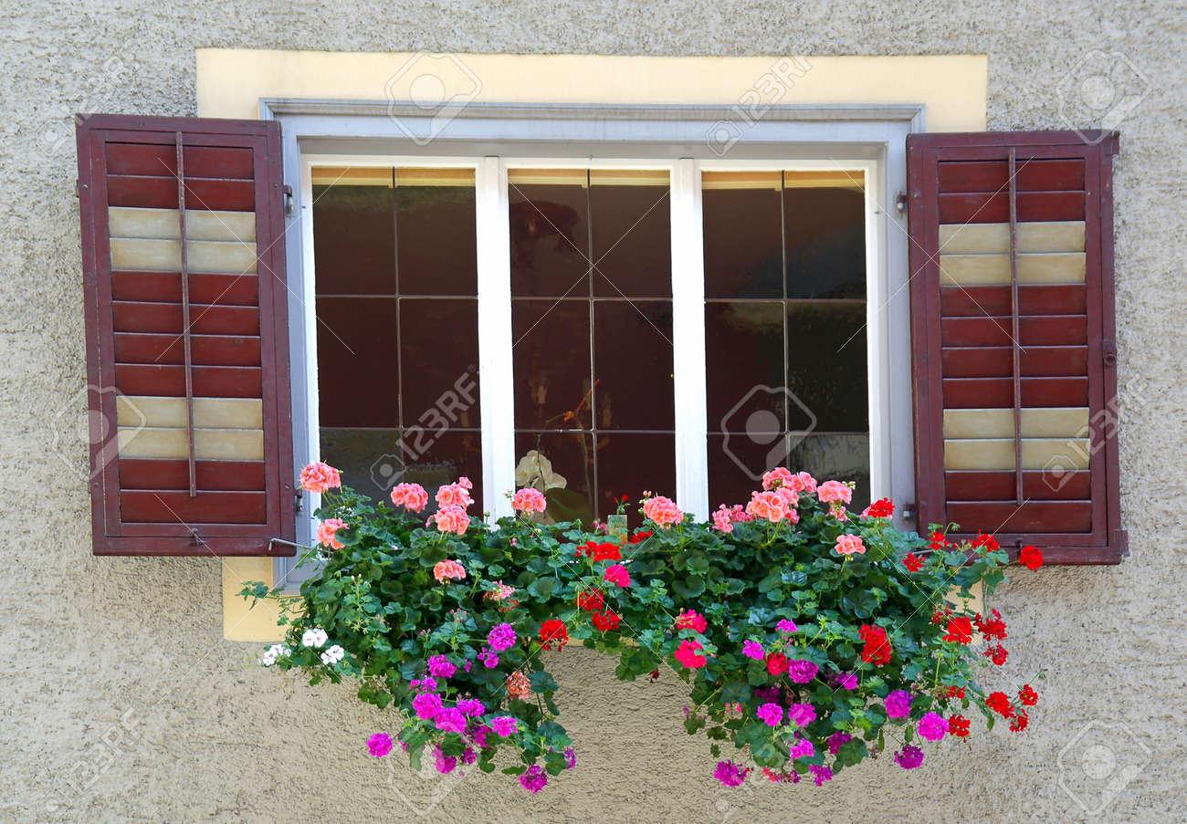 geraniums in window box Stock Photo - 23498979