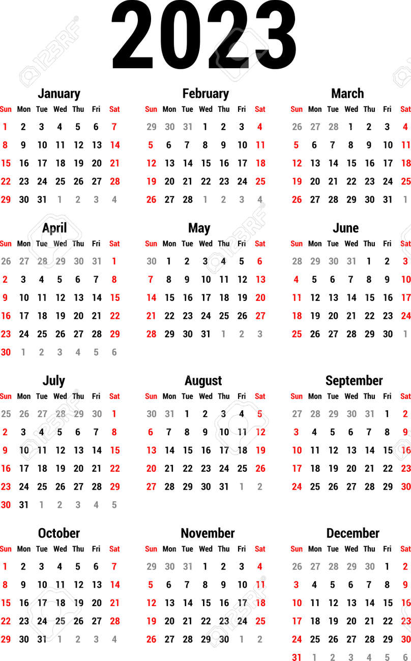 Calendar for 2023 Stock Vector - 82081925