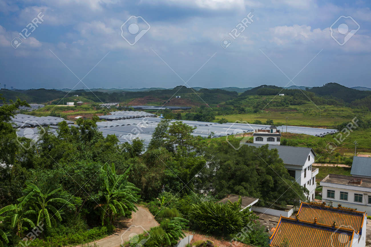 Beautiful Village Scenery Stock Photo Picture And Royalty Free