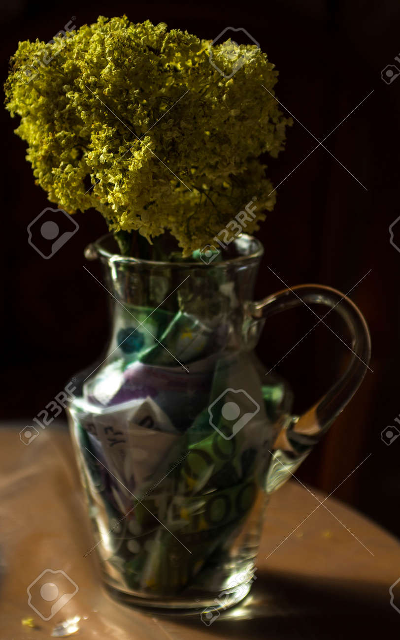 yellow dry flowers in a vase where instead of water of money. flowers grow out of money. vase floor money Euro dollars - 173551883