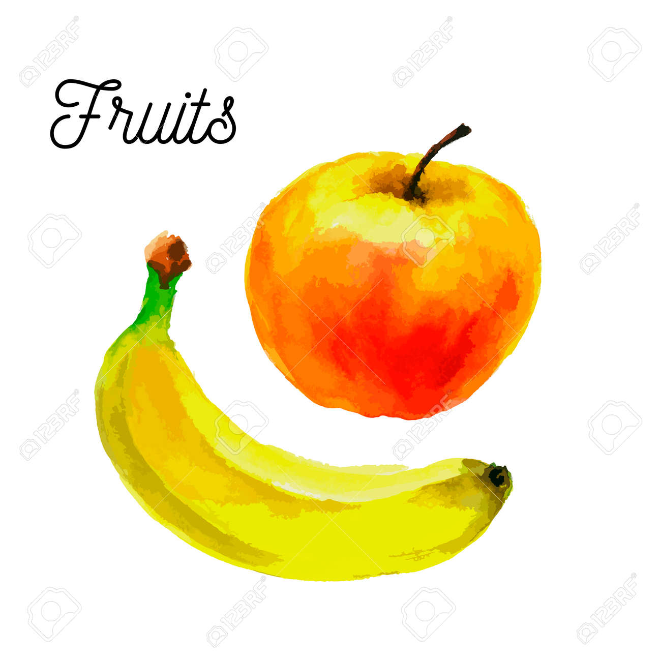 Red apple and yellow banana .fruit illustration isolated on a white background - 146773813