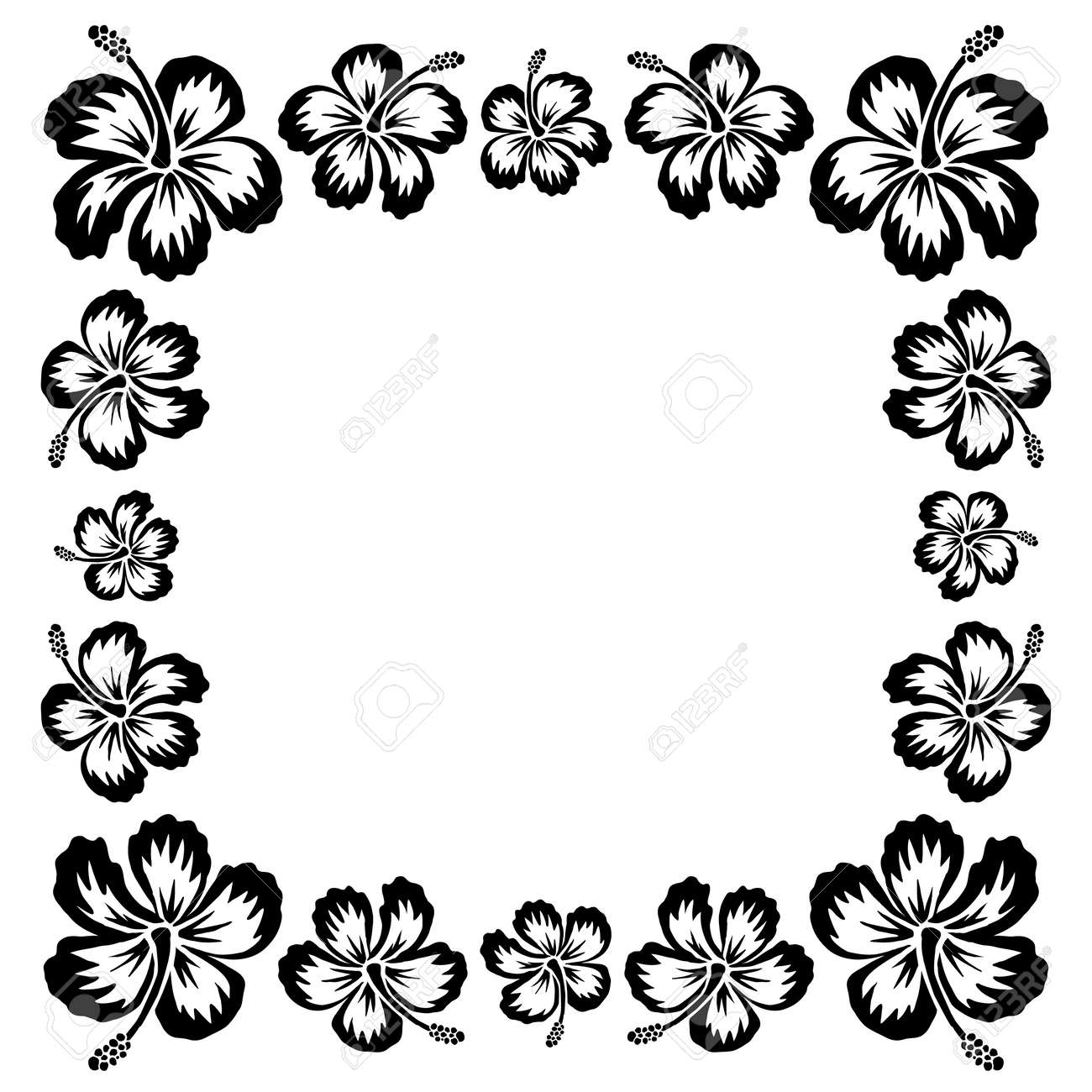 Black Ink Style Drawn Vector Hibiscus Tropical Flowers Frame Stock