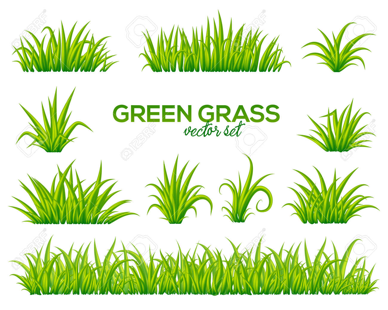 Vector tufts of grass set isolated on white background - 78028105