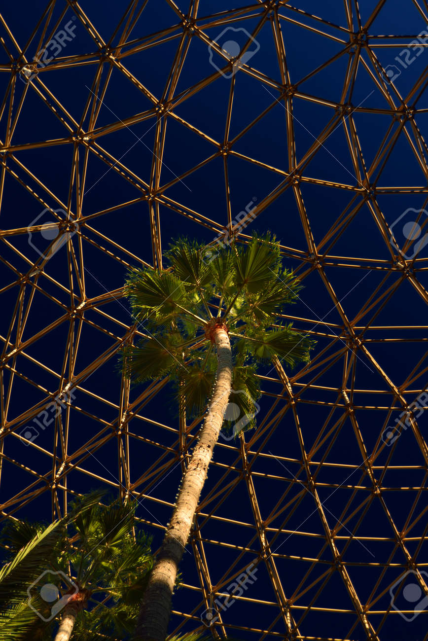 Palm tree under a geodesic dome in Los Angeles Stock Photo - 34308948
