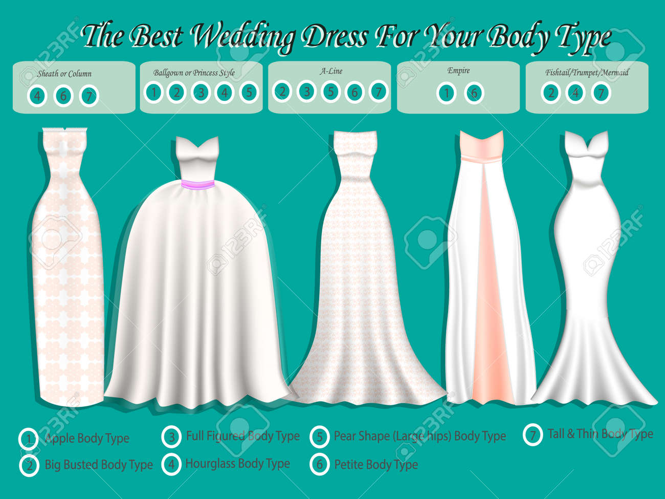 Wedding Dress For Body Type Wedding Dress Infographic Set Of