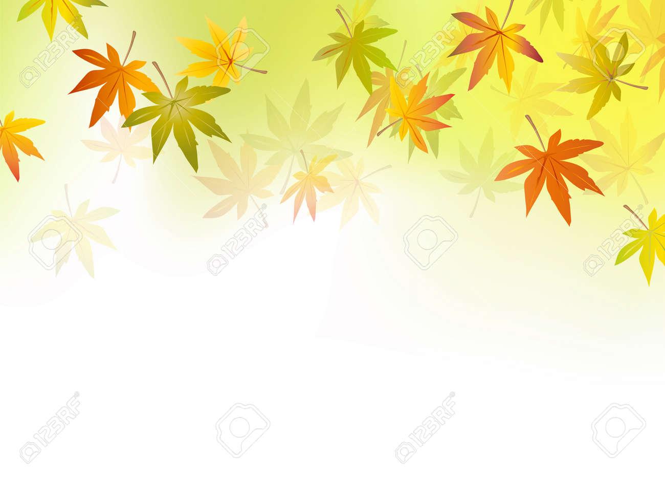 秋 秋葉 10 月シーズン 黄緑色に白の背景のグラデーション 背景ベクトル イラストのイラスト素材 ベクタ Image