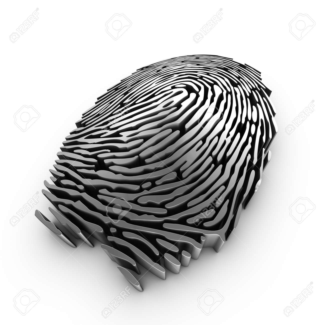 3d fingerprint representation for authentication or recognition Stock Photo - 7970740
