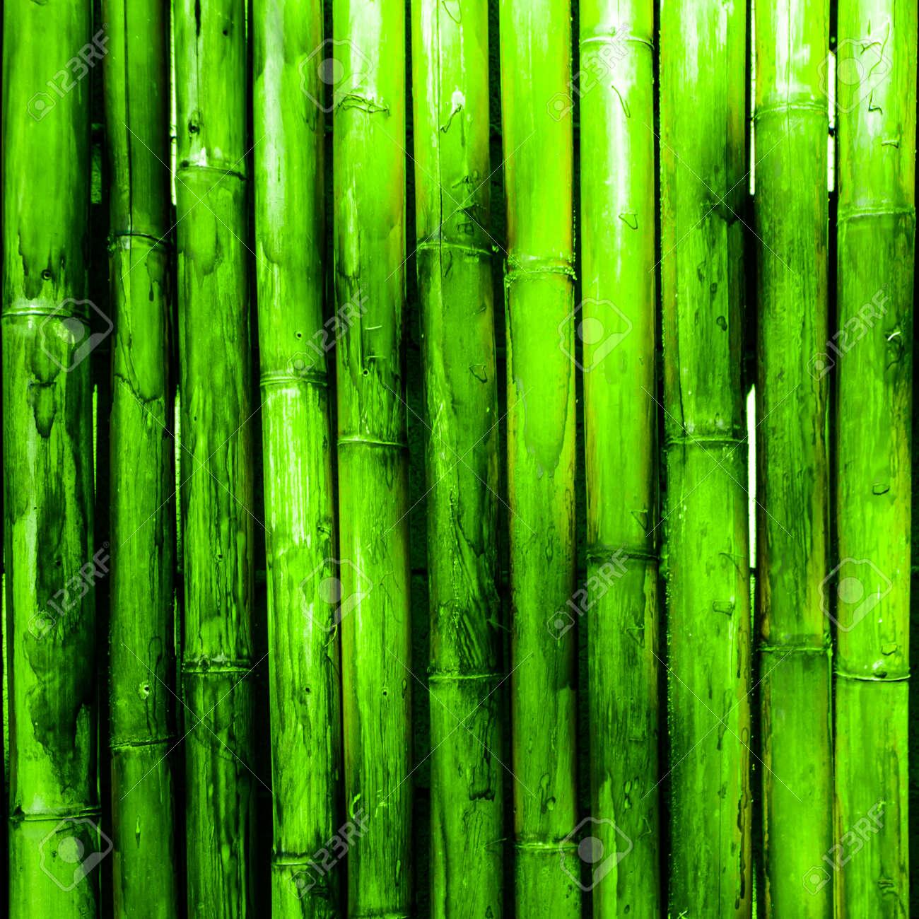 Immagini Stock Muro Di Bambù Sfondo Verde Natura Image 38613009