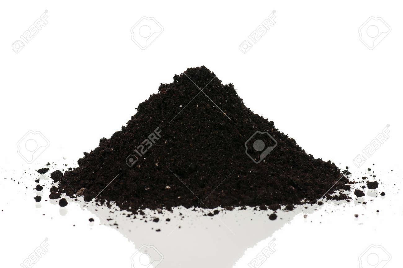 Heap of the soil Stock Photo - 15331907
