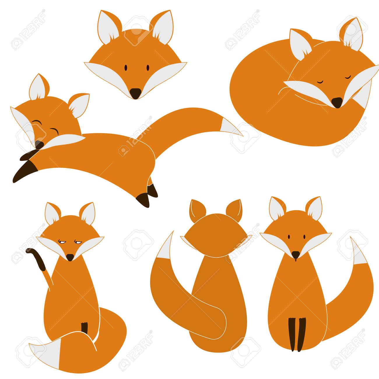 Cute fox set. vector eps8 - 28418611