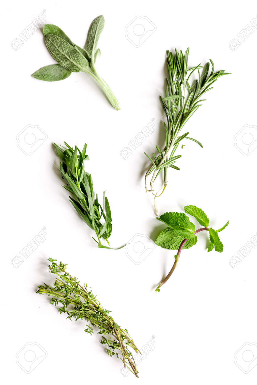 mint, sage, rosemary, thyme - tufts of herbs white background top view - 65033361