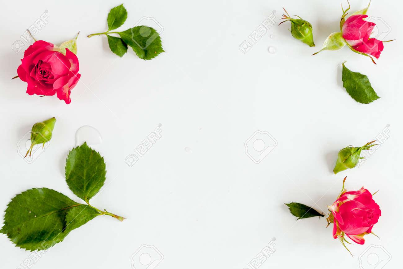 Entzückend Farbe Beere Beste Wahl Der Dekorativen Kosmetik Mit Rosen Auf Weißem