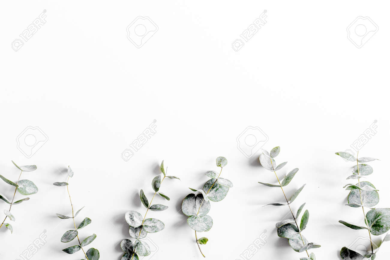 Modern spring design with plants on white background top view mock-up - 76227376