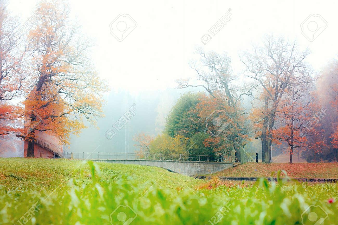 autumn fog park Stock Photo - 18992090
