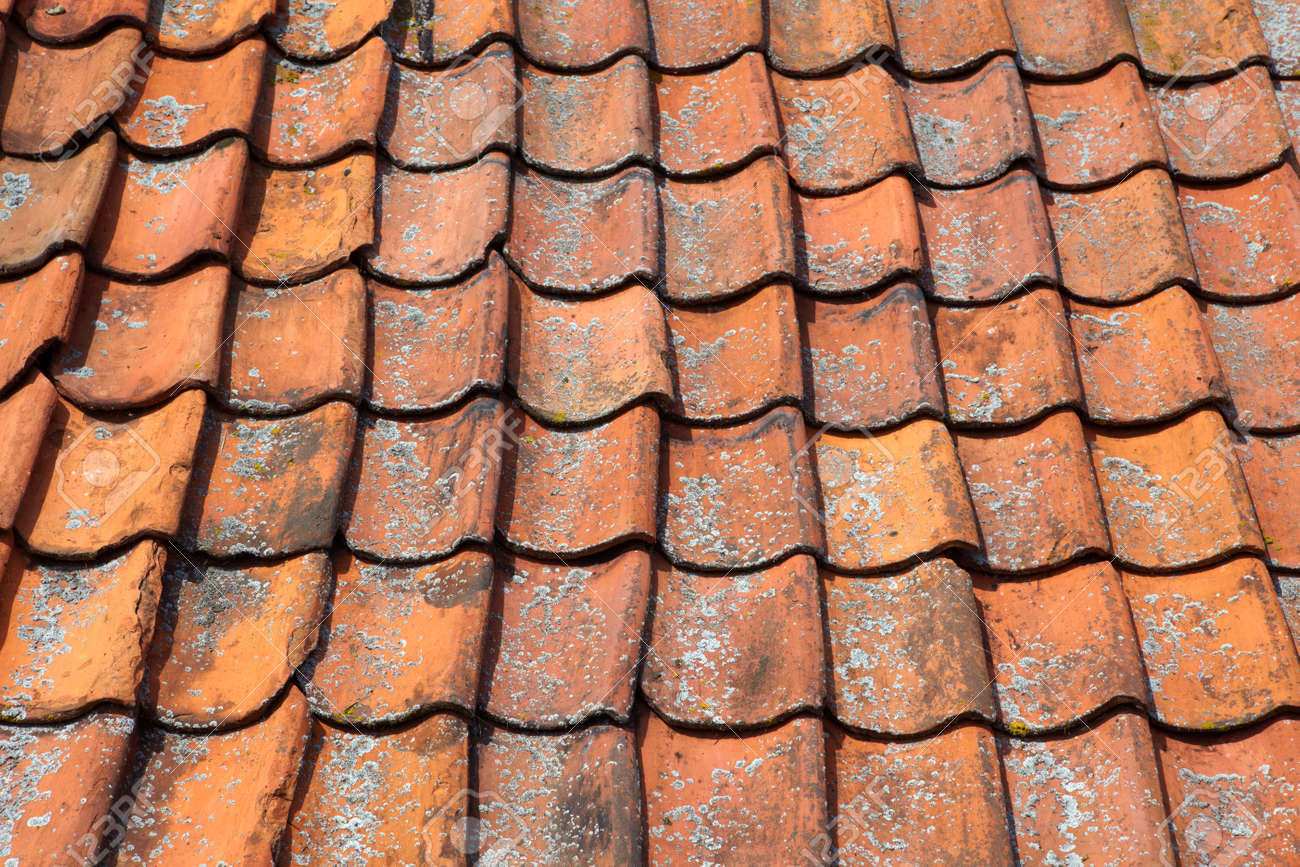 Terracotta roof tiles Architectural details Stock Photo - 10966608 : terracotta roofs - memphite.com