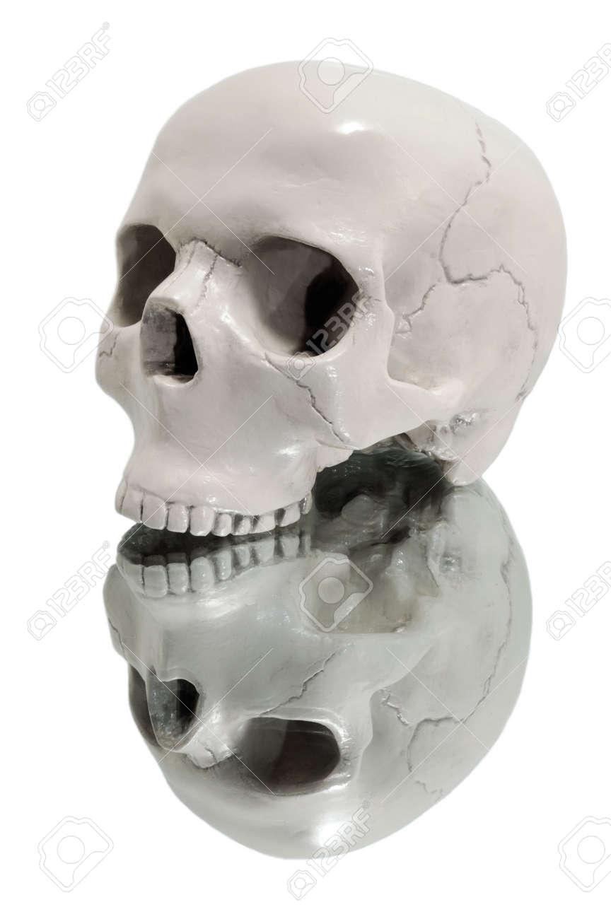 Human skull on a mirror. Stock Photo - 6229298