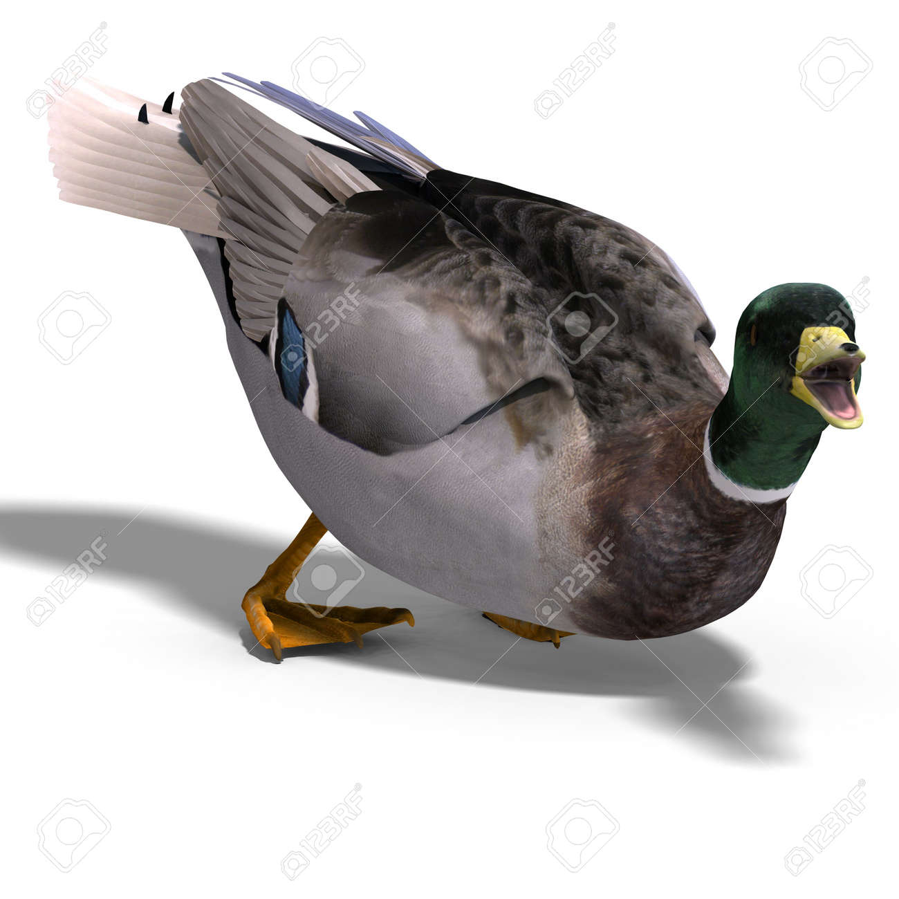 3d rendering of a duck stock photo picture and royalty free image