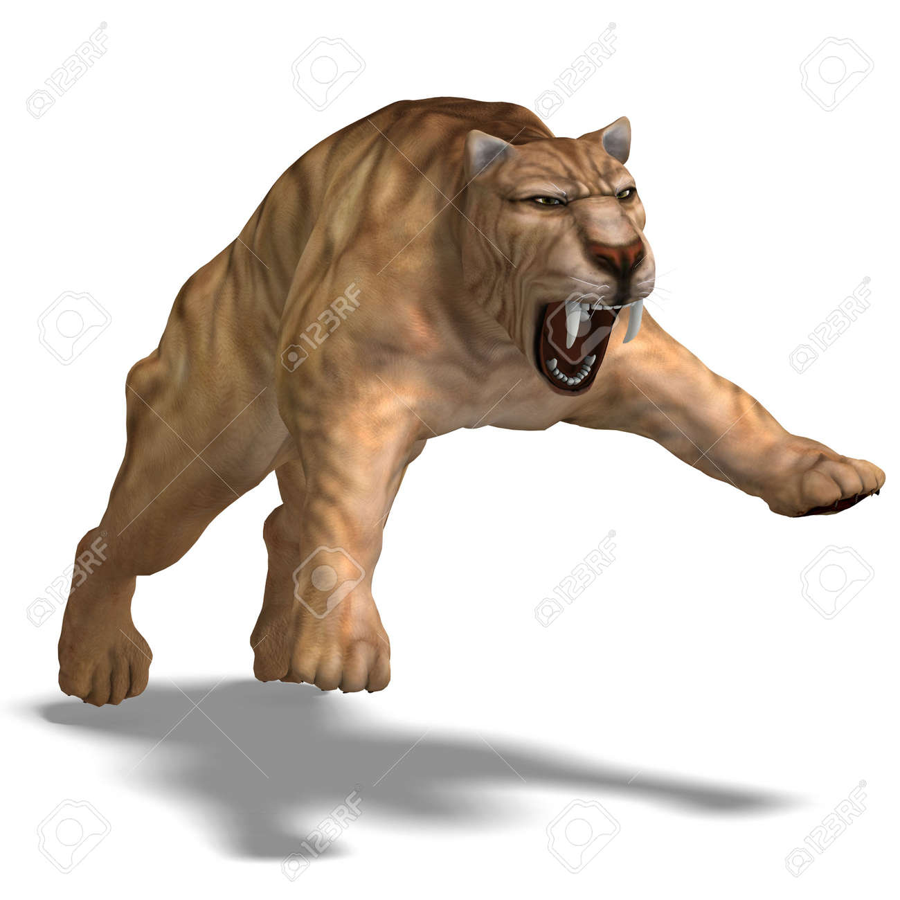 67 sabertooth tiger cliparts stock vector and royalty free