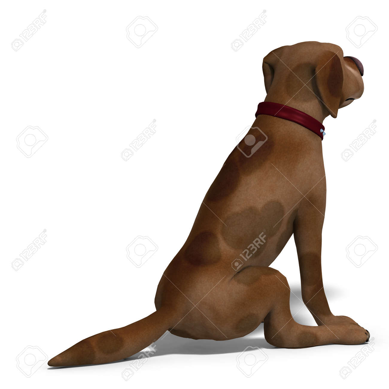 the cute and funny toon dog is a bit silly. Stock Photo - 7218944