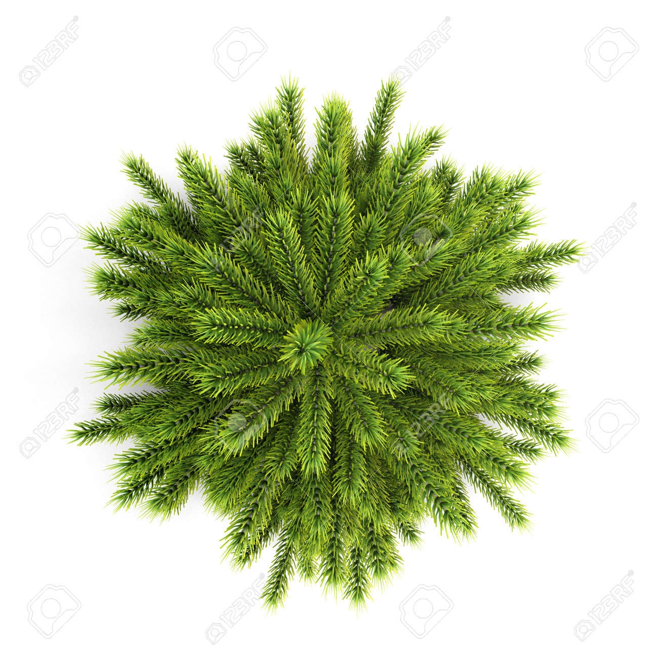 Top view christmas tree without ornaments isolated on white background. 3d  illustration. Stock Illustration