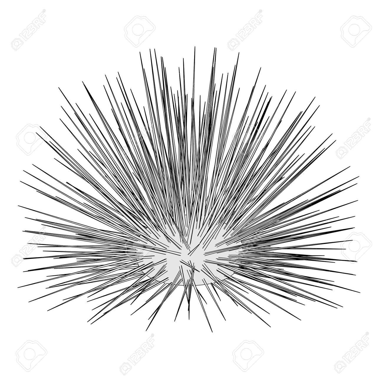 sea urchin cartoon drawing