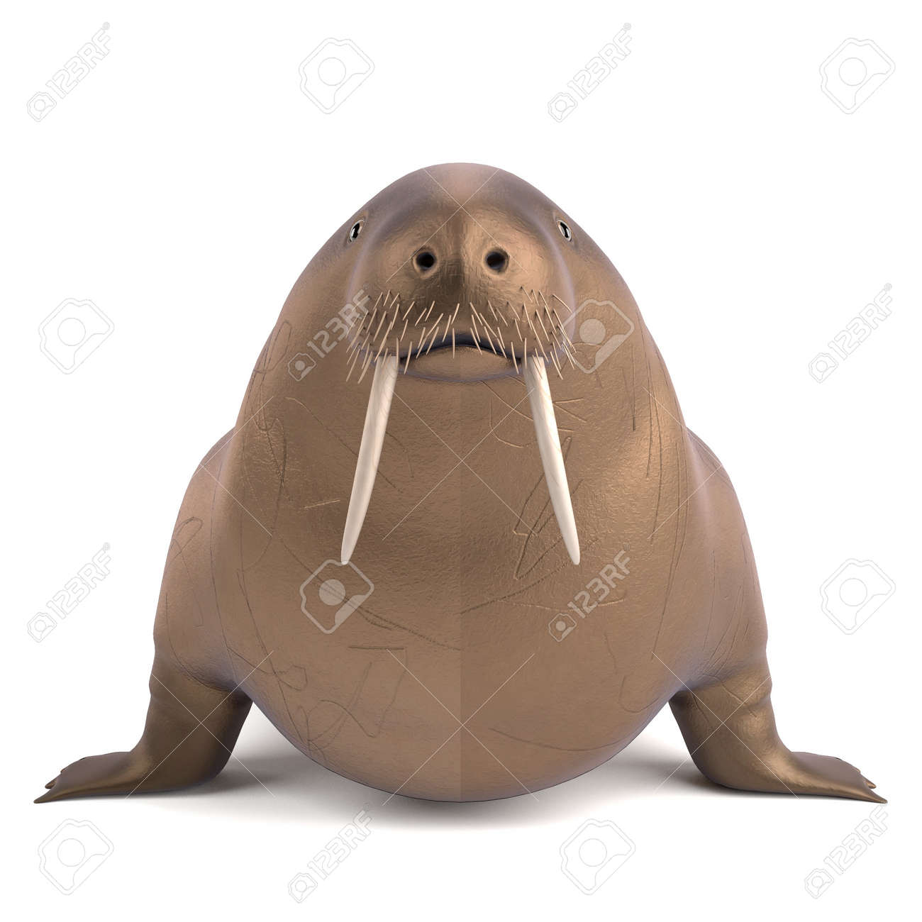3d render of walrus animal stock photo picture and royalty free