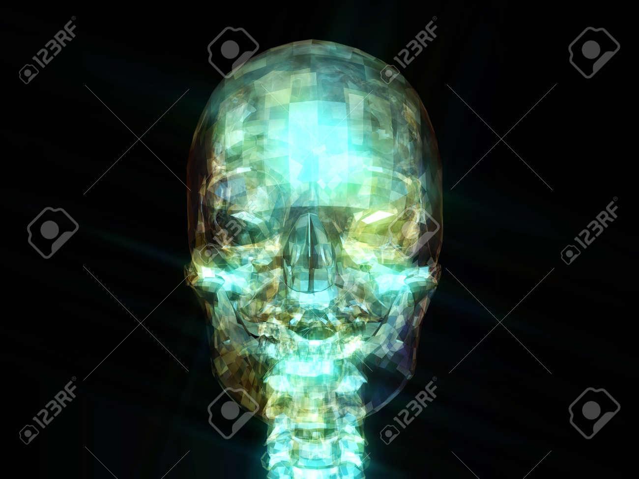 Digital Illustration of a human Skull Stock Photo - 21804210